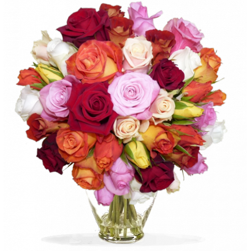Bouquet de roses lilas rose for Bouquets de roses