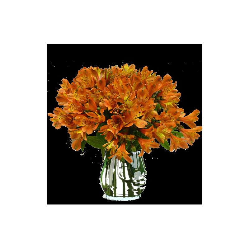 Bouquet d AlstroemeriaAlstroemeria Bouquet