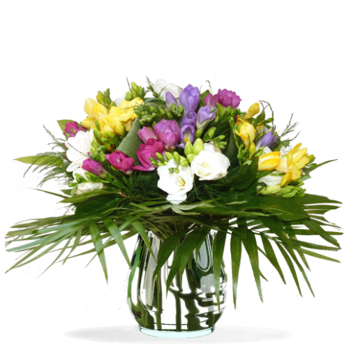 Bouquet Freesia multicolor