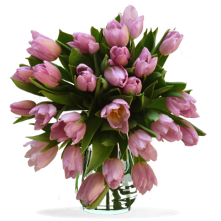 Bouquet Tulipes Violet