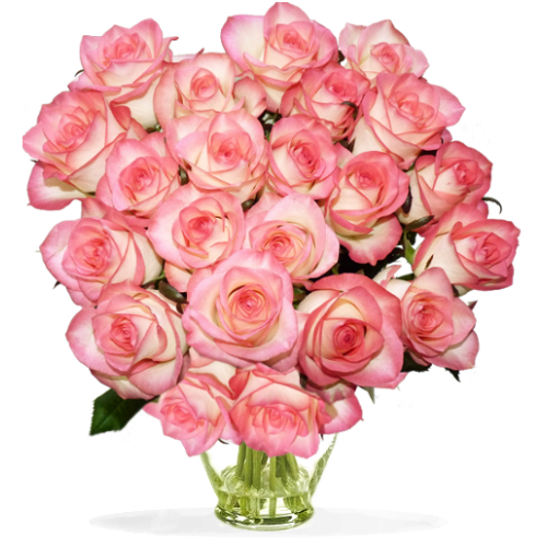 Botte de roses Jumilia