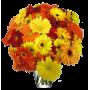 Bouquet l'Improbable orange