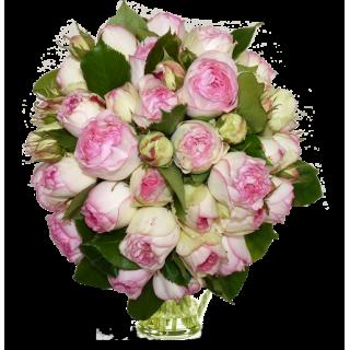 Bouquet Rose de ronsard
