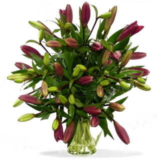 Bouquet Lys asiatique rouge