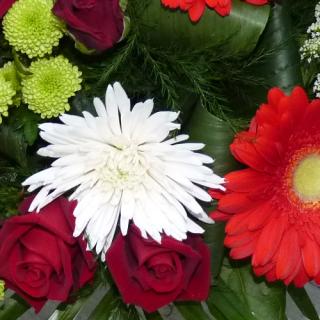 Bouquet la Citadelle Ardente