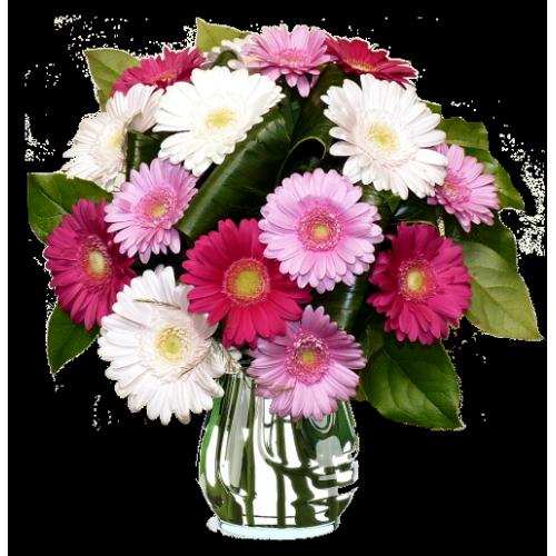 Bouquet Ecologique rose