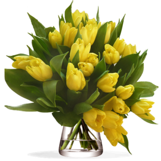 Bouquet Tulipes Jaune