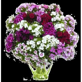 Bouquet Poète