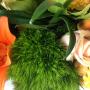 Bouquet Ulysse