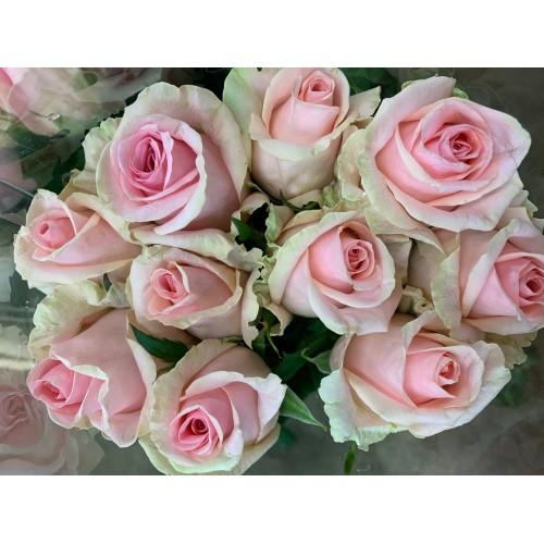 Botte de roses rose pale